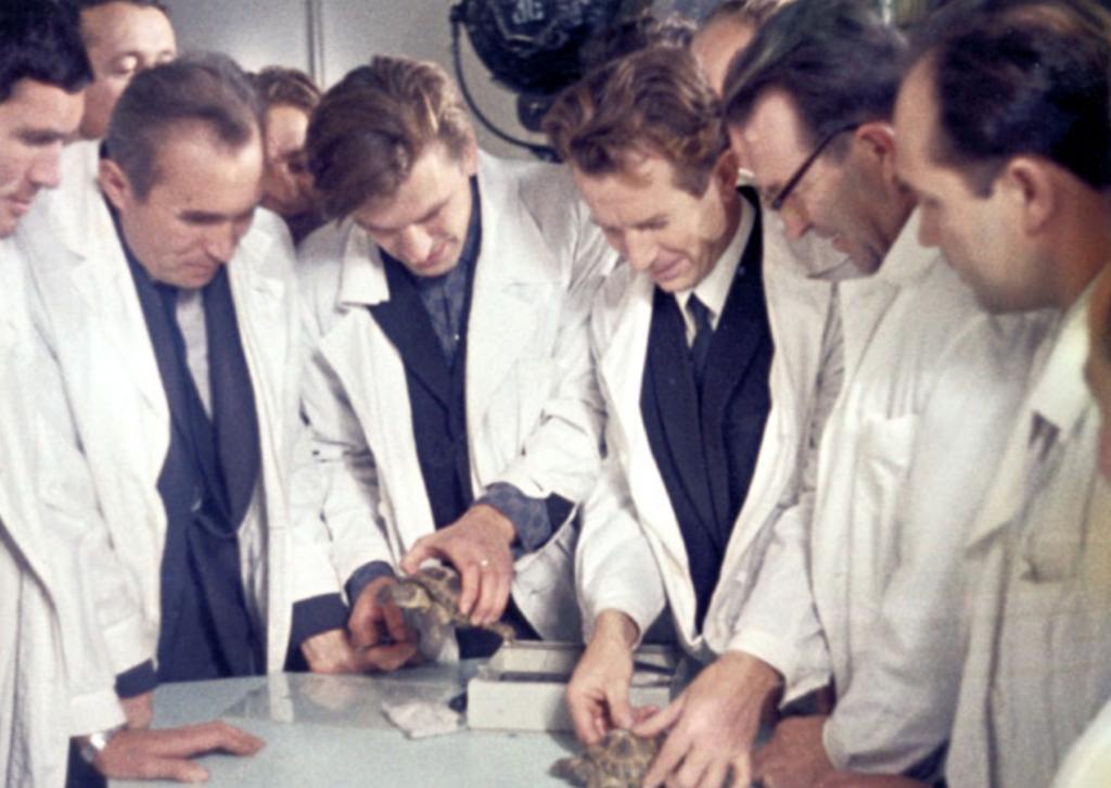 Рептилии – пассажиры «Зонда-5» после возвращения на Землю.